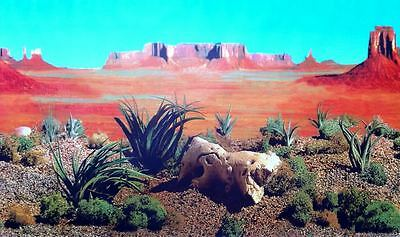 "Aquarium / Vivarium Reptile Desert Background 12"" Tall Poster Fish Viv Tank x"