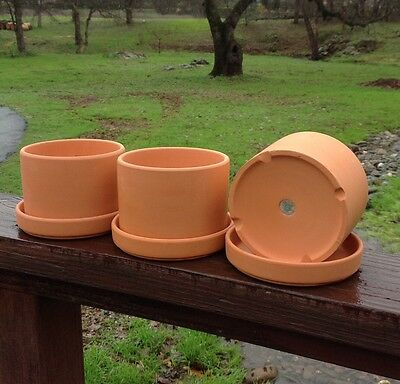 3 Natural Terra Cotta Round Fat Walled Garden Planters with Individual Trays.