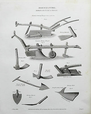 1818 Agriculture Farming Paring Ploughs & Tools Antique Print Engraving Rees