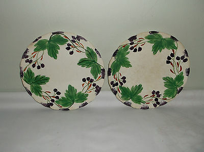A Pair of Blue Ridge Southern Potteries Fox Grape Salad Plates