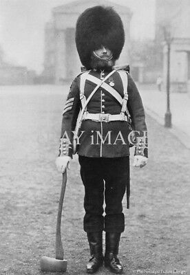 MIL 12 PHOTO PIONEER SGT STOTON OF THE 1st GRENADIER GUARDS