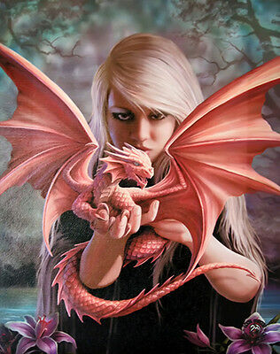 """Dragon Kin Canvas Wall Plaque by Anne Stokes 10"""" x 7"""""""