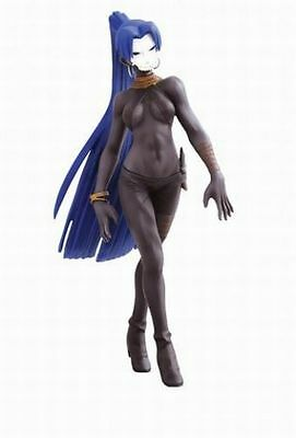 Assassin DXF Figure Japan anime Fate Zero official