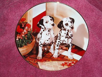"""""""Spotted in the Headlines"""" dalmatian plate, Hamilton Collection No.0815B"""