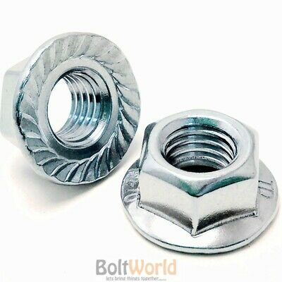 M6 M8 M10 M12 M16 M20 Zinc Plated Hex Serrated Flange Nuts Nut Bzp Din 6923 Bw