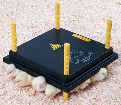 COMFORT 25 Chick Brooder Electric Hen - 15 Watt heat plate for Chickens/Poultry