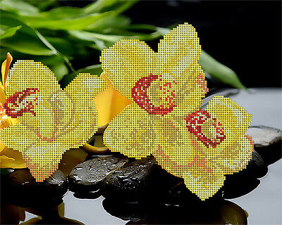 Orchids DIY beadpoint kit beaded embroidery satin tapestry glass seed beads
