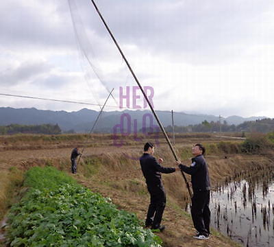 NEW Mesh Anti Bird Mist Net Agricultural Orchard Protect Prevent Bird Damage