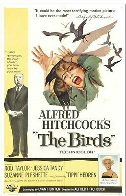 The Birds - Rod Taylor - Alfred Hitchcock - A4 Laminated Mini Poster