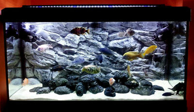 Aquarium Fish Tank Solid Background 3D Grey Rock Rocky Wall Vivarium Polyresin