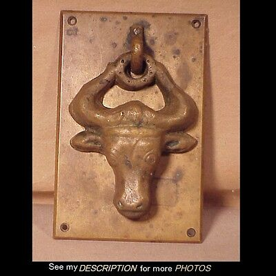Antique Heavy Cast Brass Steer / Bull's Head Door Knocker Western Theme
