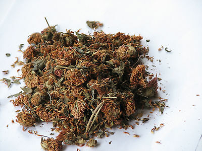Red Clover Herbs Magical and Incense use, metaphysical, Protection, Luck