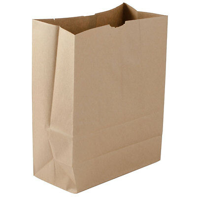 FREE SHIPPING!!! 1,000pcs Size: 1/6 Heavy Duty Brown Paper Retail Paper Sack.