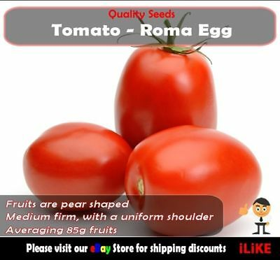 Tomato Roma Egg 20 Seeds Minimum. Vegetable Garden Plant. Italian Favourite.