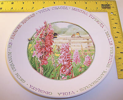nEw Hallmark plate ~ Wildflower Meadow w/ Birds & Bees ~ by Marjolein Bastin