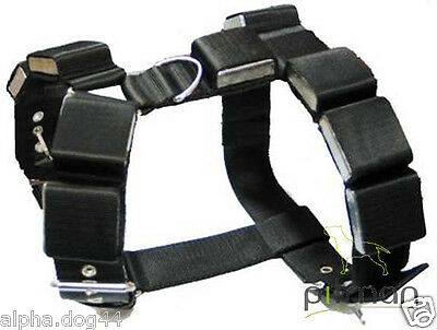 Dog Harness with Weight for Training/ bodybuilder dog
