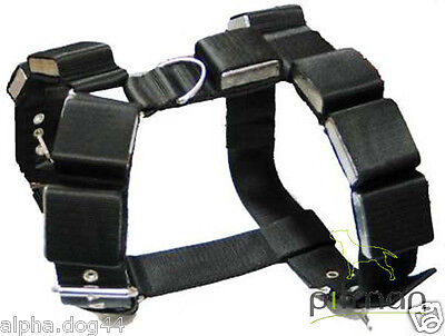 Weighted dog harness
