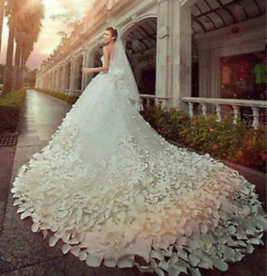 2015 NEW White/Ivory Wedding dress Bridal Gown Custom Size 4 6 8 10 12 14 16 +++