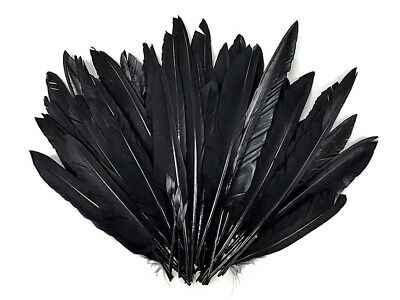 1/4 lbs - BLACK Duck Pointer Primary Wing Wholesale Feathers Halloween Craft