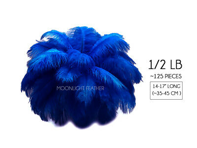 """~125 Feathers - 14-17"""" Royal Blue Ostrich Drabs Wholesale Feathers Centerpiece"""