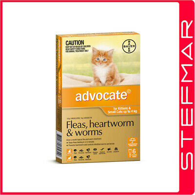 Bayer Advocate Cat Upto 4Kg Small Orange 6Pack