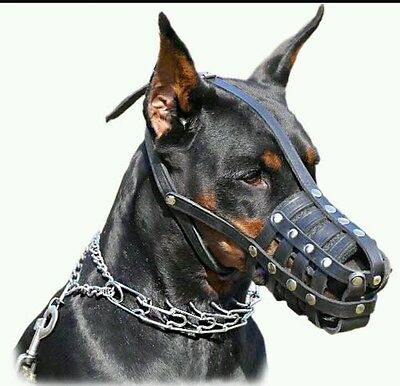 Muzzle for Doberman Pinscher and similar snout, real leather