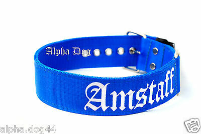 "Nylon Dog Collar ""Amstaff"" with Free Personalized Tag"