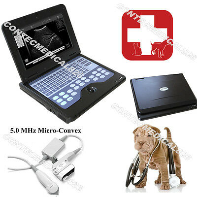 Vet Using Animal Veterinary CE ultrasound scanner diagnostic with Micro Convex