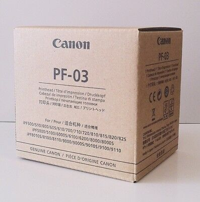 NEW Canon PF-03 Print Head 2251B001 from JAPAN