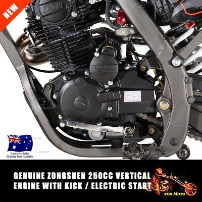 Genuine ZongShen 250cc OHC Vertical Dirt Bike Kick/Electric Start Motor Engine