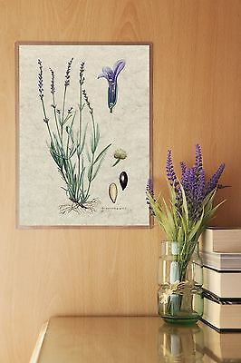 Pocket Pad™ Permanent Wall Poster Sign Display Holders Office Work Home