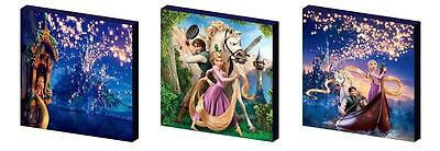 Tangled- Rapunzel Canvas Wall Art Plaques/pictures