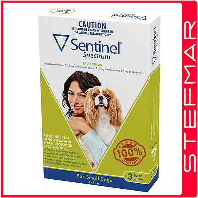 Sentinel Spectrum for Dogs Chews 4-11Kg Small Green 3Pack