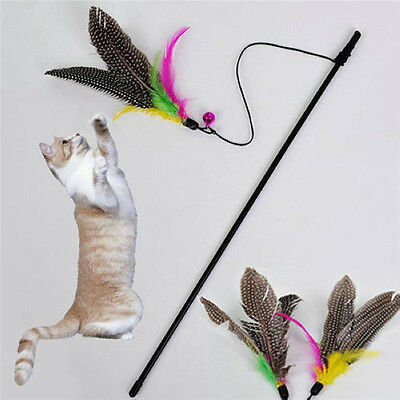 Funny Kitten Play Length Interactive Fun Toy Cat Teaser Wand Pet Feather