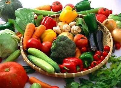 Organic Non-Gmo Heirloom vegetable seed Garden Survival Kit-21 kinds all in one