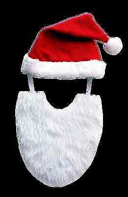 Festive Fashion Santa Hat & Beard - dog Christmas costume