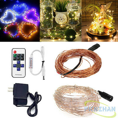5M/10M/20M/30M/50M Silver/Copper Wire Light Fairy LED String Light/Remote/Power