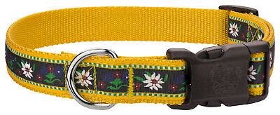 Country Brook Design® Deluxe Edelweiss Ribbon Dog Collar