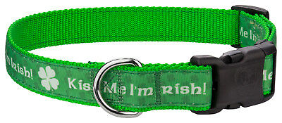 Country Brook Design® Deluxe Kiss Me I'm Irish Ribbon Dog Collar