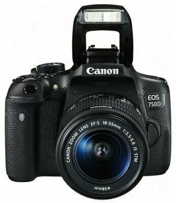 Canon EOS Rebel T6i/750D DSLR Camera W/ EF-S 18-55mm f/3.5-5.6 IS STM Lens Black