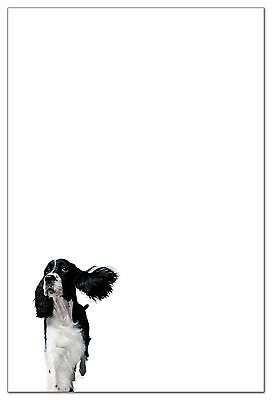 English Springer Spaniel Stationery (6 flat cards with envelopes)