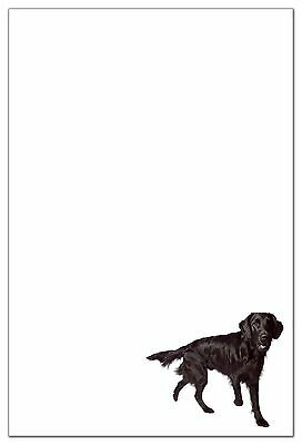 Flat-Coated Retriever Stationery (6 flat cards with envelopes)