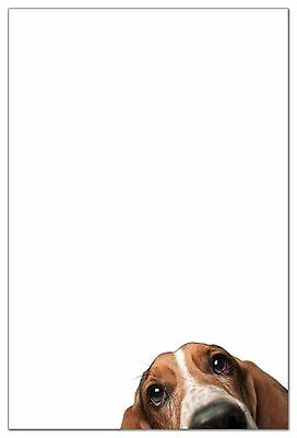 Basset Hound Stationery (6 flat cards with envelopes)