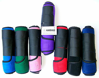 Medicine Brushing Support Boots Horse Equestrian New 10 Colors Amidale Sports