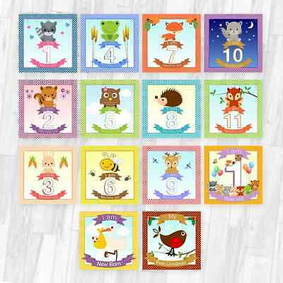Baby Milestone Cards / Photo Prop Baby Shower Pregnancy Gift Woodland Creatures