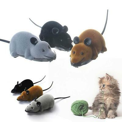 Novelty Wireless RC Remote Control Rat Mouse Toy For Cats Dogs Pets Kids 2016 FT
