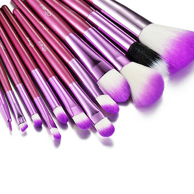 Glow 12 Purple Professional Make up Brushes Set in Crocodile Leather Design Case