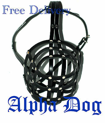 Strong Light leather Dog muzzle Caucasian Shepherd & other large dogs