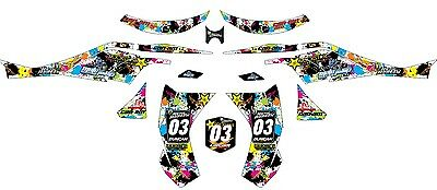 Can Am  Graphic Kit  DS-450