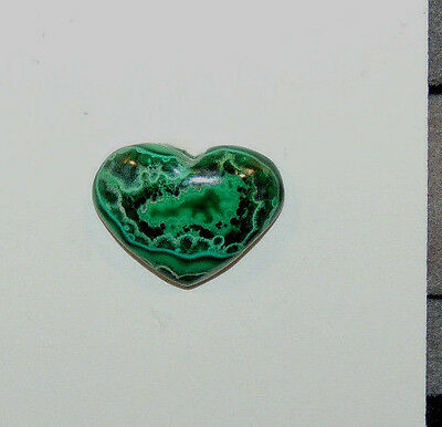 Malachite and Chrysocolla Heart Cabochon 13x17mm with 4mm dome  (9715)